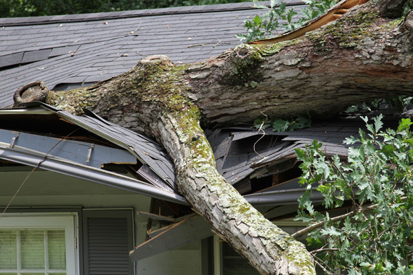 Charming Storm Damage Cleanup Madison Heights MI   Roofing, Siding, Gutter Repair |  Martino Home