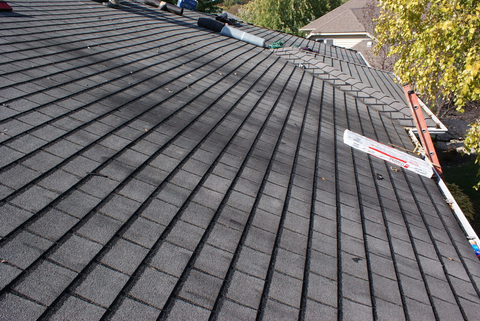 how to clean algae from roof shingles
