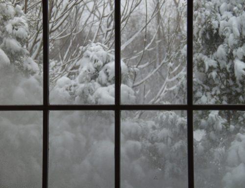 Energy Savings Through Windows in Bloomfield Hills, MI