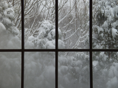 Bloomfield Hills Snowy Window