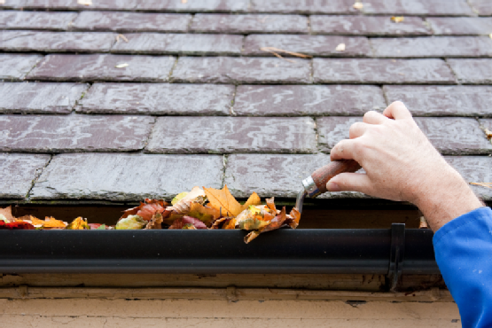 Clean Gutters and Downspouts in Oakland County