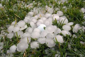 Hail Damage in Metro Detroit