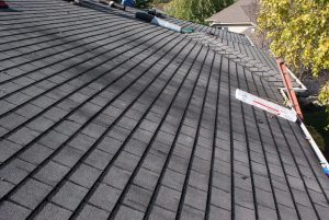 How to Get Rid of Algae On Roofs in Rochester Hills, Michigan