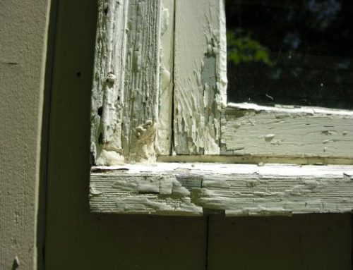 Reasons to Replace Your Old Windows in Ferndale, MI